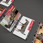 Möbel Schott – Anzeigenkampagne