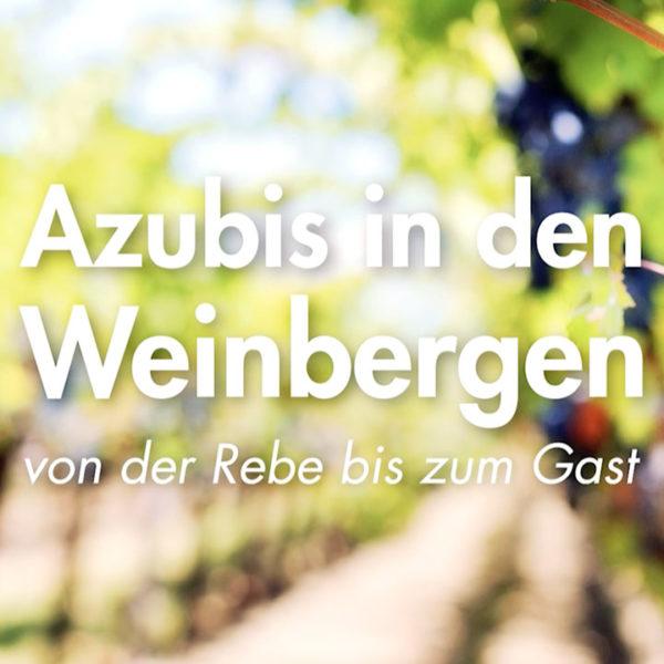 Azubis in den Weinbergen – Imagefilm