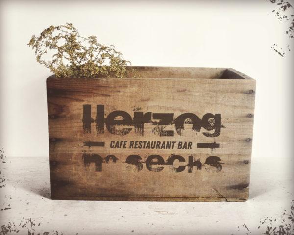 Corporate Design für Herzog6